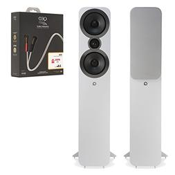Floorstanding Surround Sound Speakers